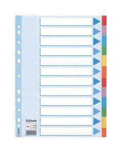 Przekładki kolorowy karton z kartą opisową A4 100194 12 kart ESSELTE